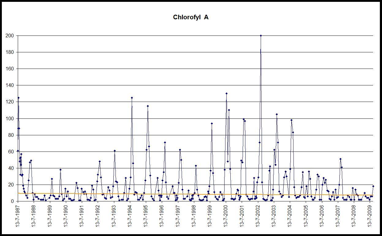 grafiek chlorofyl